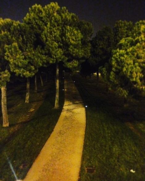 Circuito Runner VLC nocturno