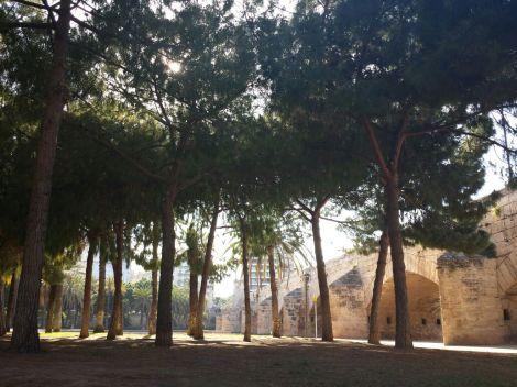 Valencia Legendaria Segundo Premio II Concurso Fotografía